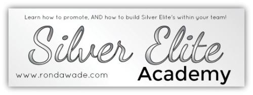 Silvereliteacademy